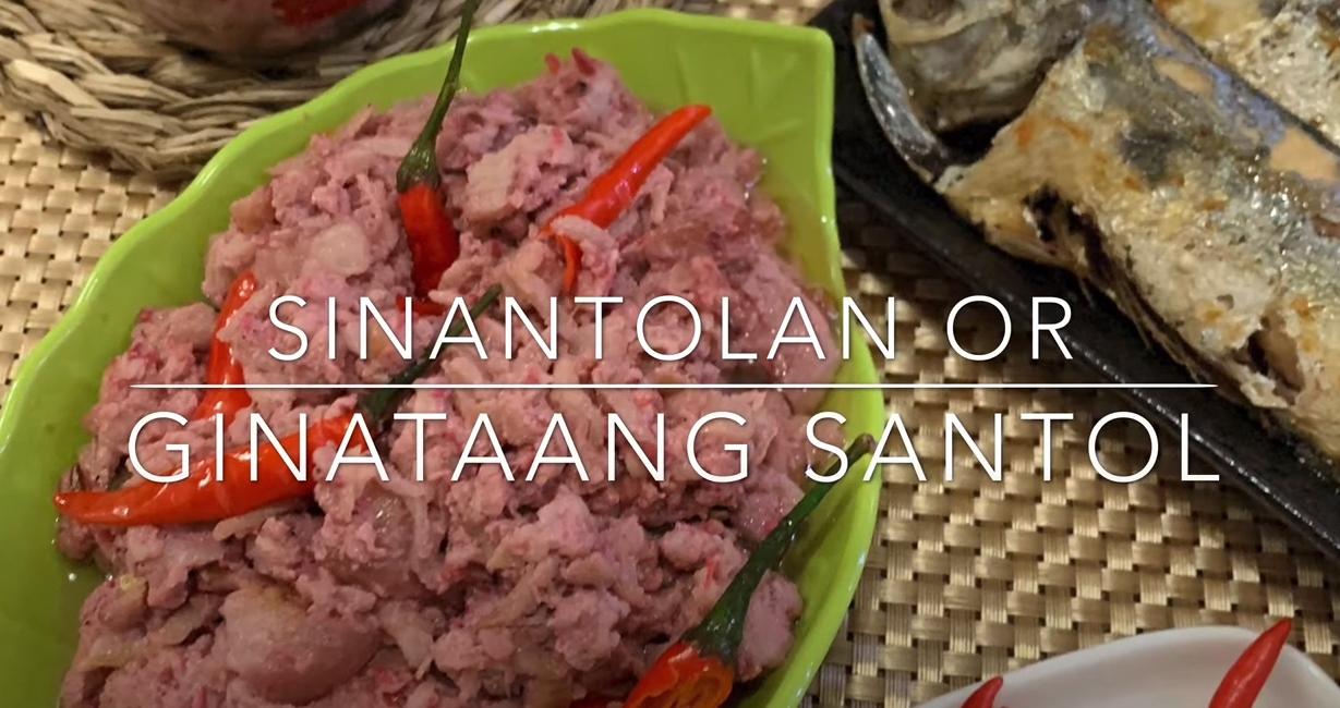 House of Hazelknots - Sinantolan or Ginataang Santol